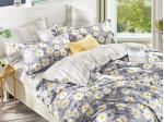Комплект постельного белья Asabella 1005 (размер евро)