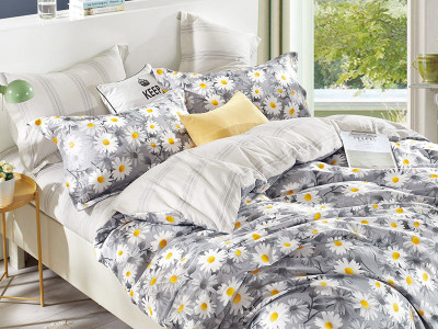 Комплект постельного белья Asabella 1005/160 на резинке (размер евро)