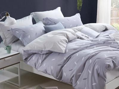 Комплект постельного белья Asabella 1012 (размер евро)