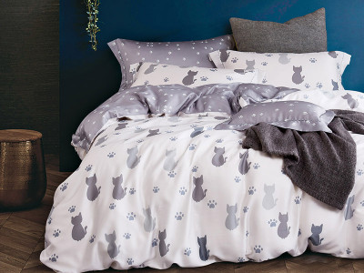 Комплект постельного белья Asabella 1035 (размер евро)