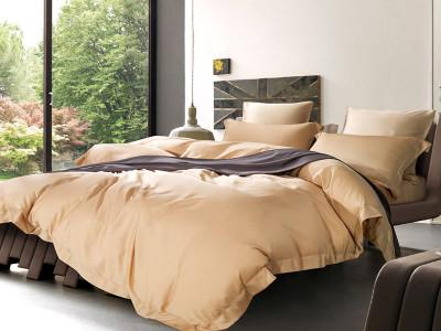 Комплект постельного белья Asabella 1044 (размер евро)