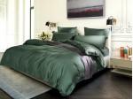 Комплект постельного белья Asabella 1045 (размер евро-плюс)