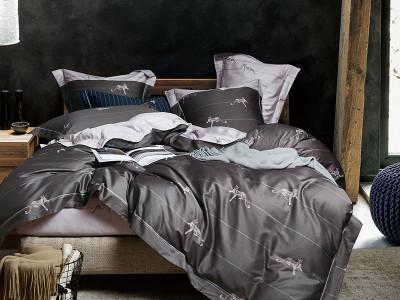Комплект постельного белья Asabella 1148 (размер евро-плюс)