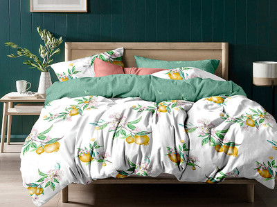 Комплект постельного белья Asabella 1151 (размер евро-плюс)