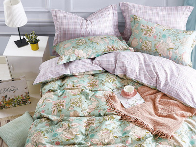 Комплект постельного белья Asabella 1408 (размер евро-плюс)