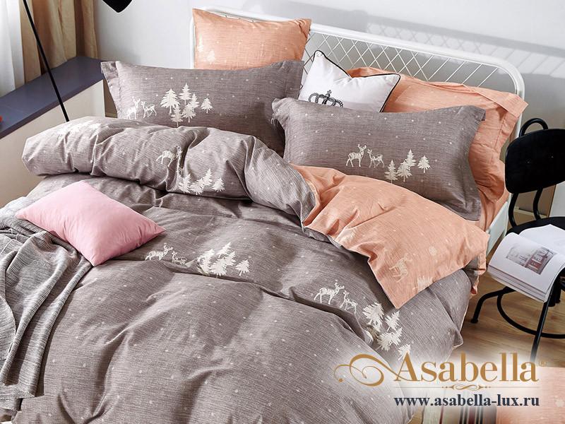 Комплект постельного белья Asabella 1421 (размер евро)