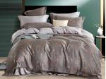 Комплект постельного белья Asabella 1449 (размер евро)