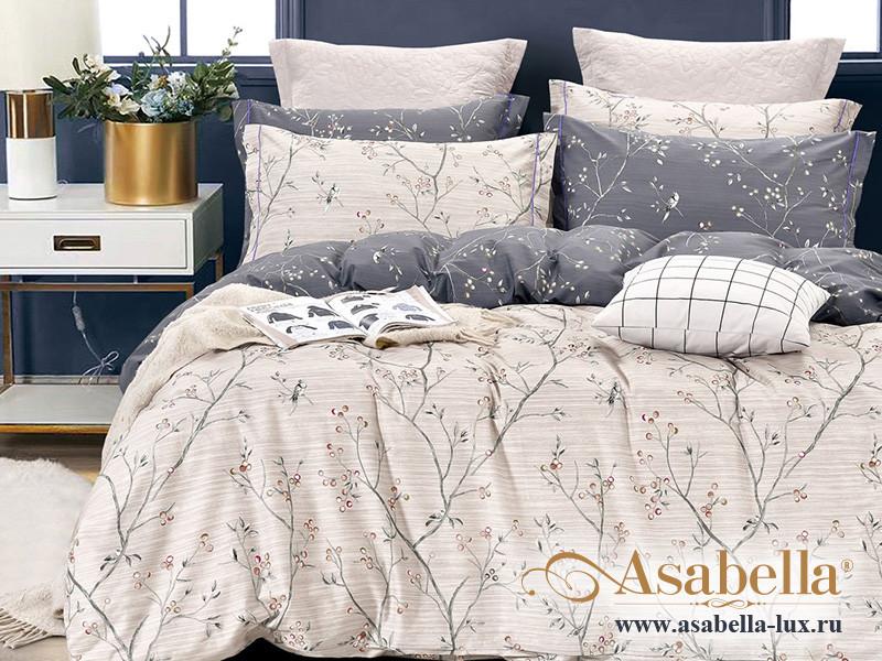Комплект постельного белья Asabella 1486 (размер евро-плюс)