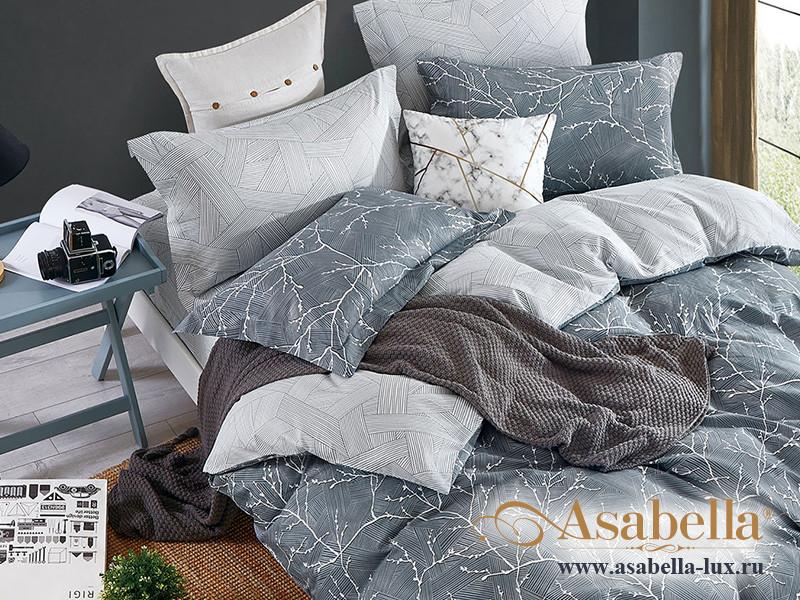 Комплект постельного белья Asabella 1490 (размер евро)