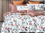 Комплект постельного белья Asabella 1520 (размер евро-плюс)