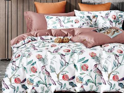 Комплект постельного белья Asabella 1520 (размер семейный)
