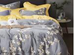 Комплект постельного белья Asabella 1525 (размер евро)