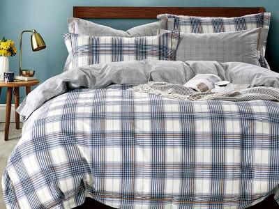 Комплект постельного белья Asabella 1550 (размер евро)