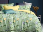 Комплект постельного белья Asabella 1564 (размер 1,5-спальный)