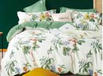 Комплект постельного белья Asabella 1566 (размер семейный)