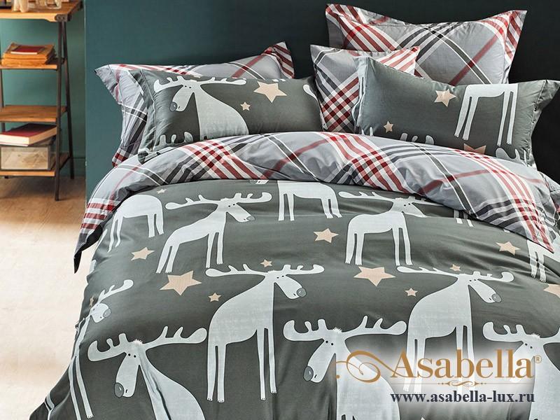 Комплект постельного белья Asabella 245 (размер евро-плюс)