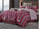Комплект постельного белья Asabella 468 (размер евро)