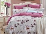 Комплект постельного белья Asabella 705 (размер евро)