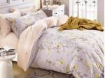 Комплект постельного белья Asabella 880 (размер евро)