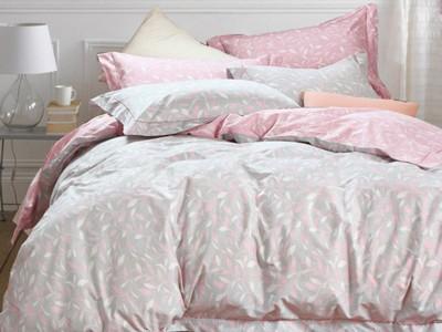 Комплект постельного белья Asabella 995 (размер евро-плюс)